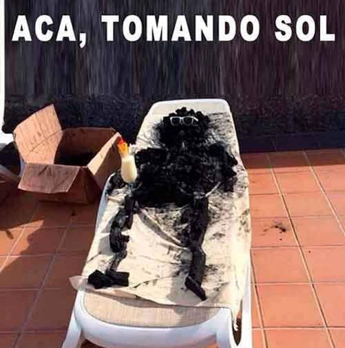 Memes-calor5
