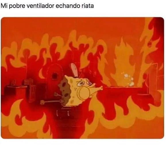 Memes-calor8