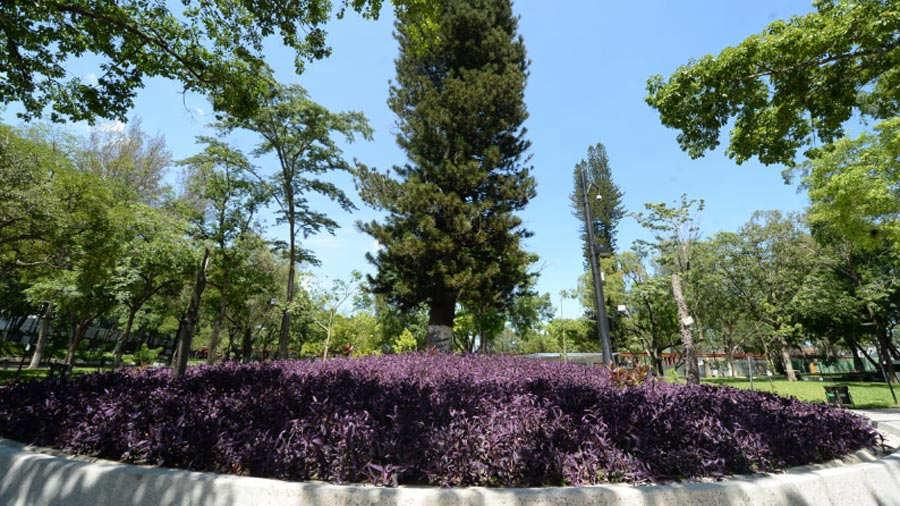 Parque-Cuscatlan-09