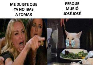 Jose-Jose-gato