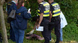 Vendedora de pan muere arrollada por un conductor que se durmió al volante en Guazapa
