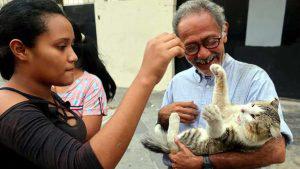 Heathcliff, el gato más querido del centro de San Salvador, se encuentra desaparecido