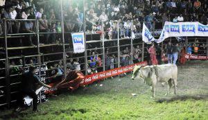 Jaripeo-Feria-Ganadera01
