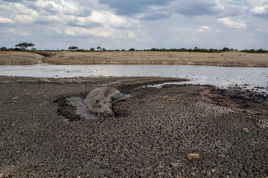 ZIMBABWE-ENVIRONMENT-DROUGHT