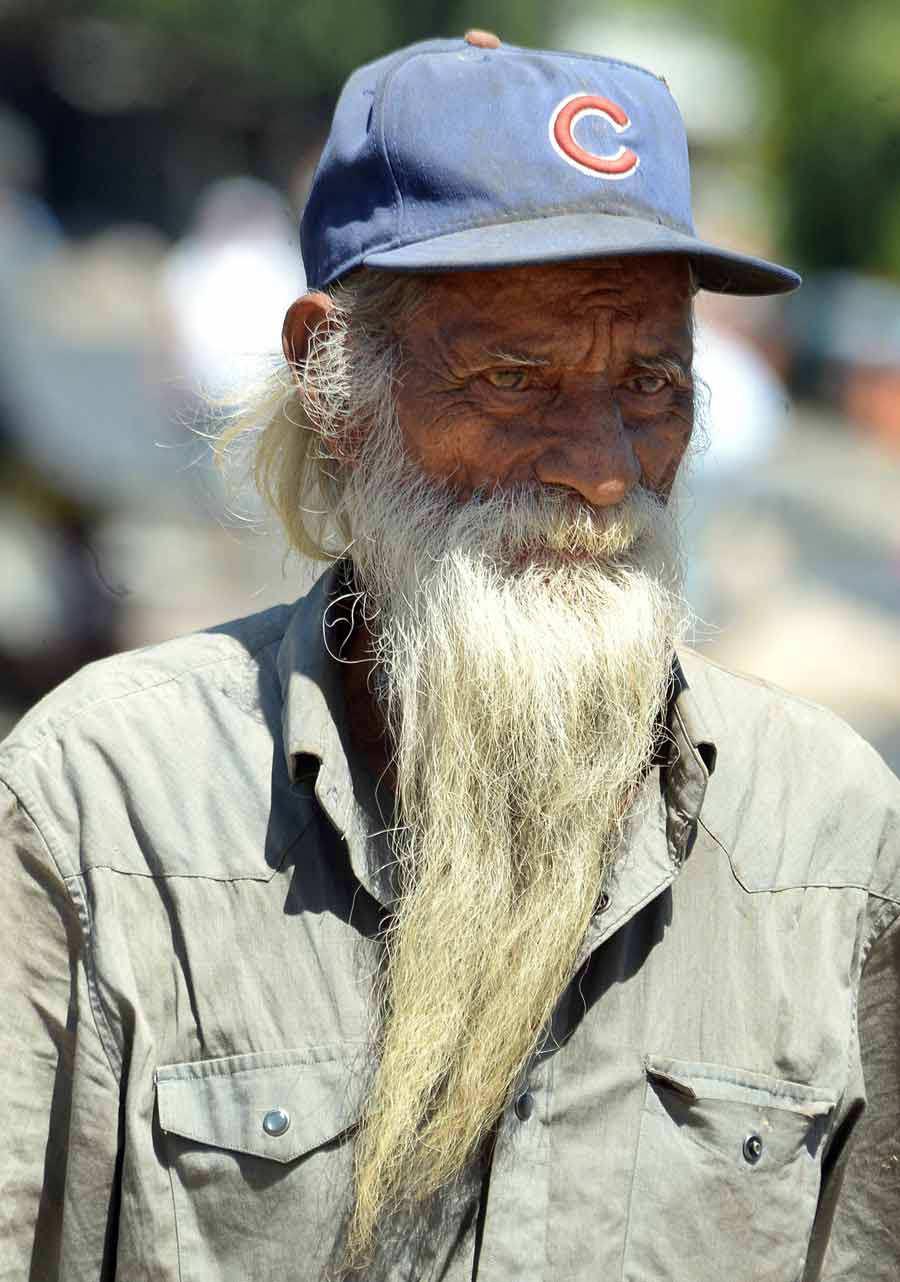 barba3