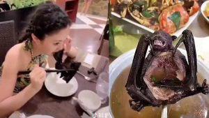 Se viralizan imágenes de mujer comiendo un murciélago en China