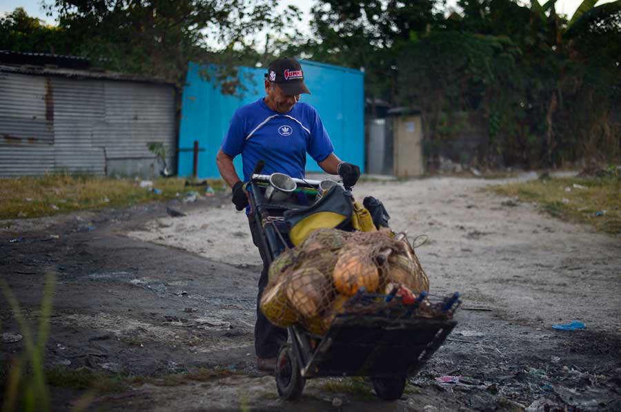 aJO-Don-Mario-Coco-Vendedor-de-cocos019