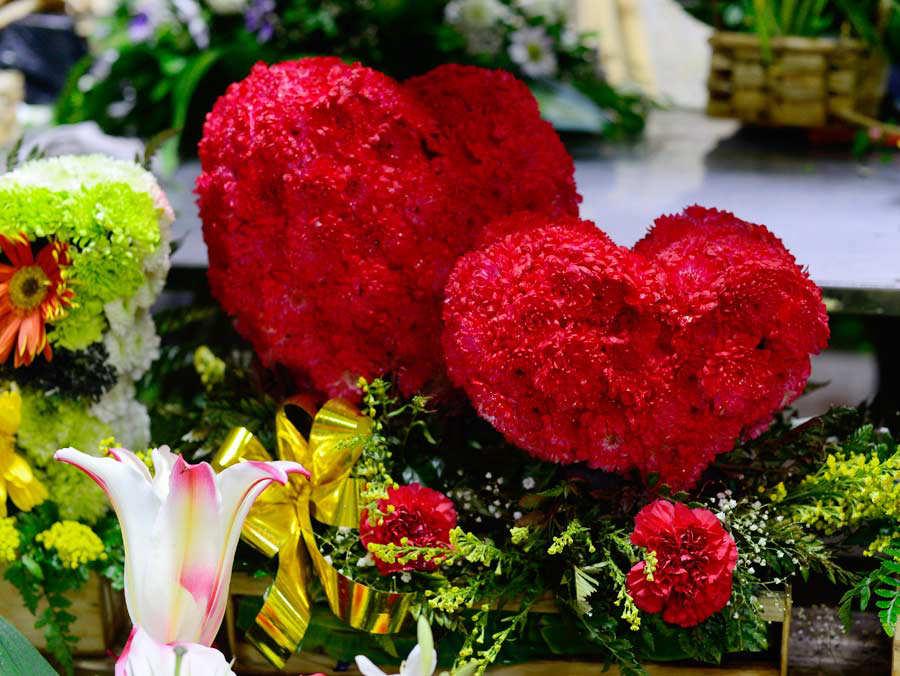 Flores_01