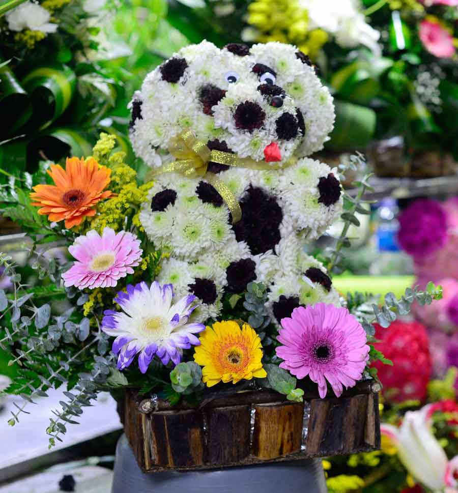 Flores_05
