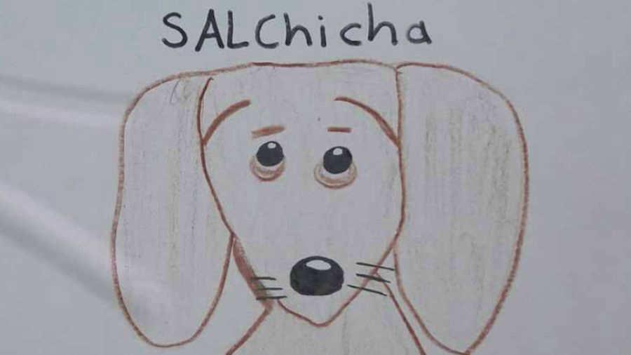 Se perdió su perra y, como no tenía fotos, dibujó carteles