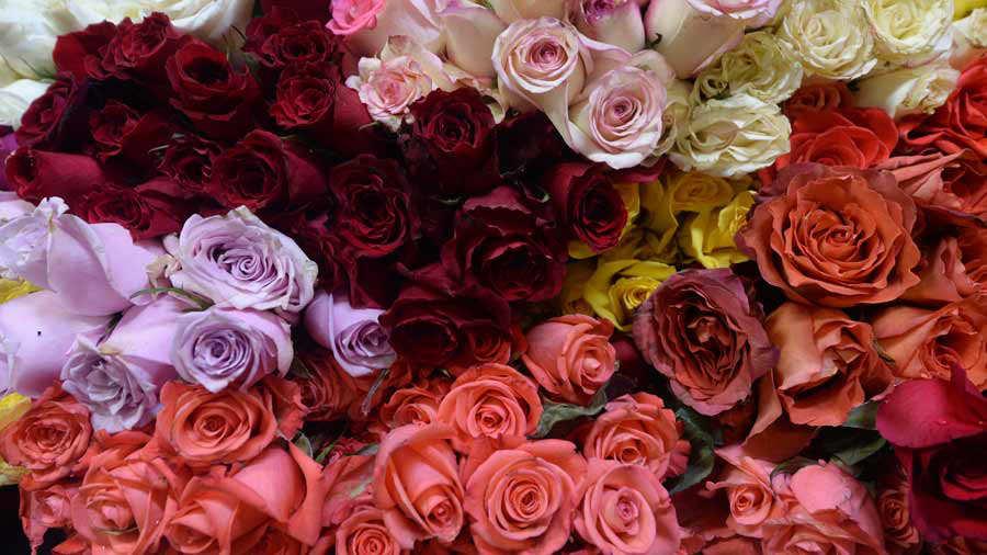 Flores mercado coronavirus_04