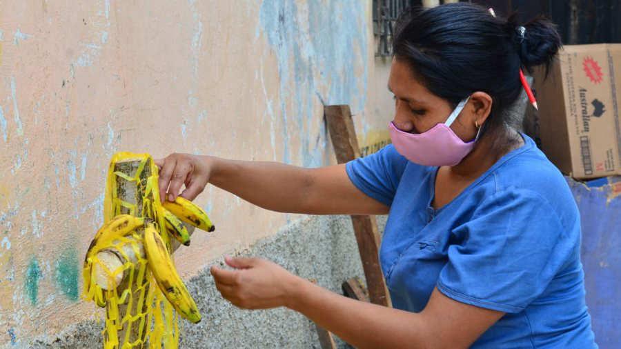 ¿Cuál es el significado del Día de la Cruz? Salvadoreños mantienen viva esta tradición en cuarentena | Noticias de El Salvador - elsalvador.com
