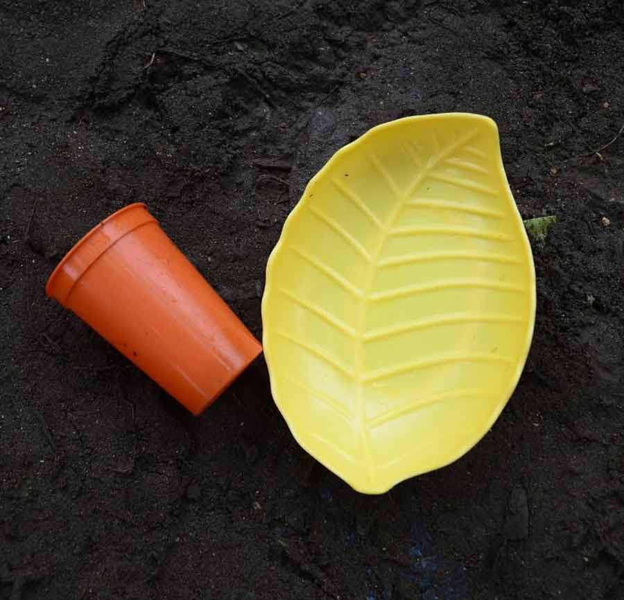 Un vaso de pl‡stico y un plato  que estaba debajo de un tronco.