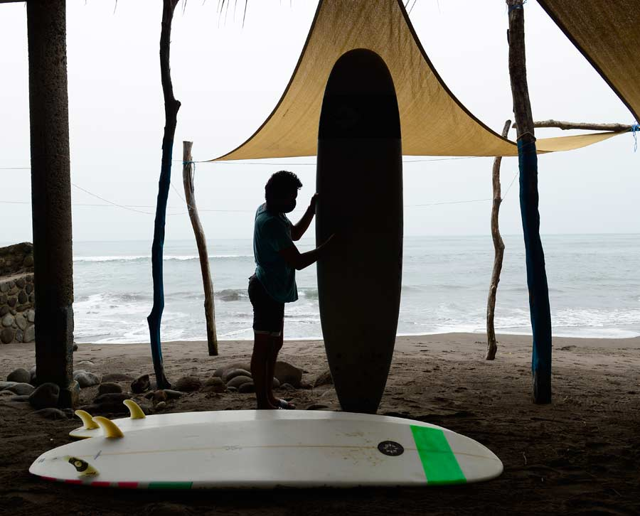 Maestro surf_07