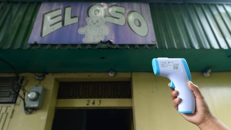 el oso7 (1)