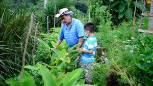 Don Toño cultiva más de 100 productos bajo un sistema de policultivos