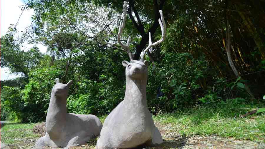 aFR-esculturas-de-animales060