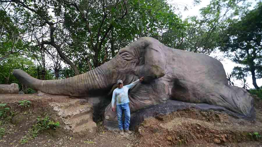 aFR-esculturas-de-animales068