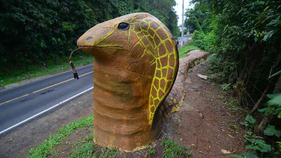 aFR-esculturas-de-animales070