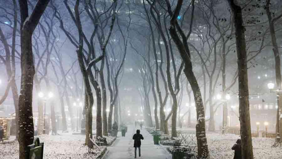 NIEVE-EN-NUEVA-YORK5