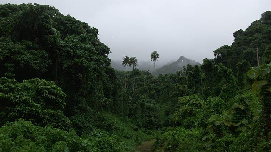 Islas-Cook-