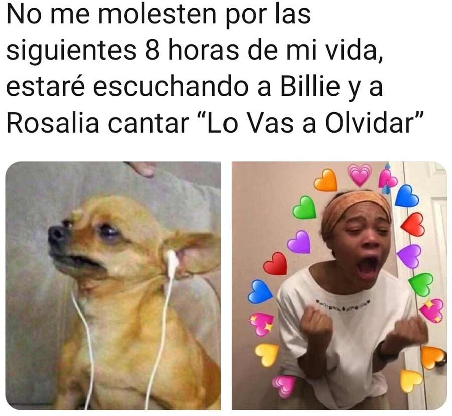 Memes Rosalia y Billie Eilish_07