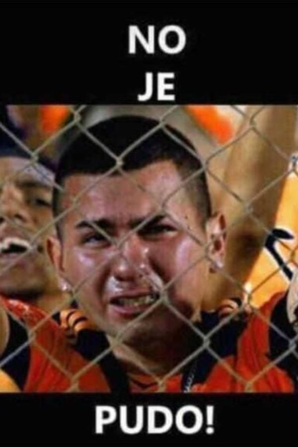 memes aguila9