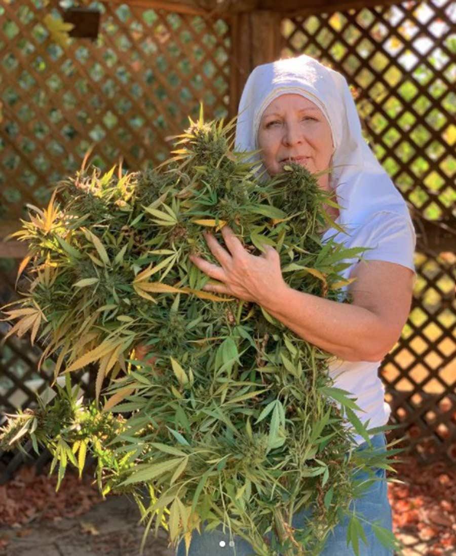 monjas-con-negocio-de-marihuana12
