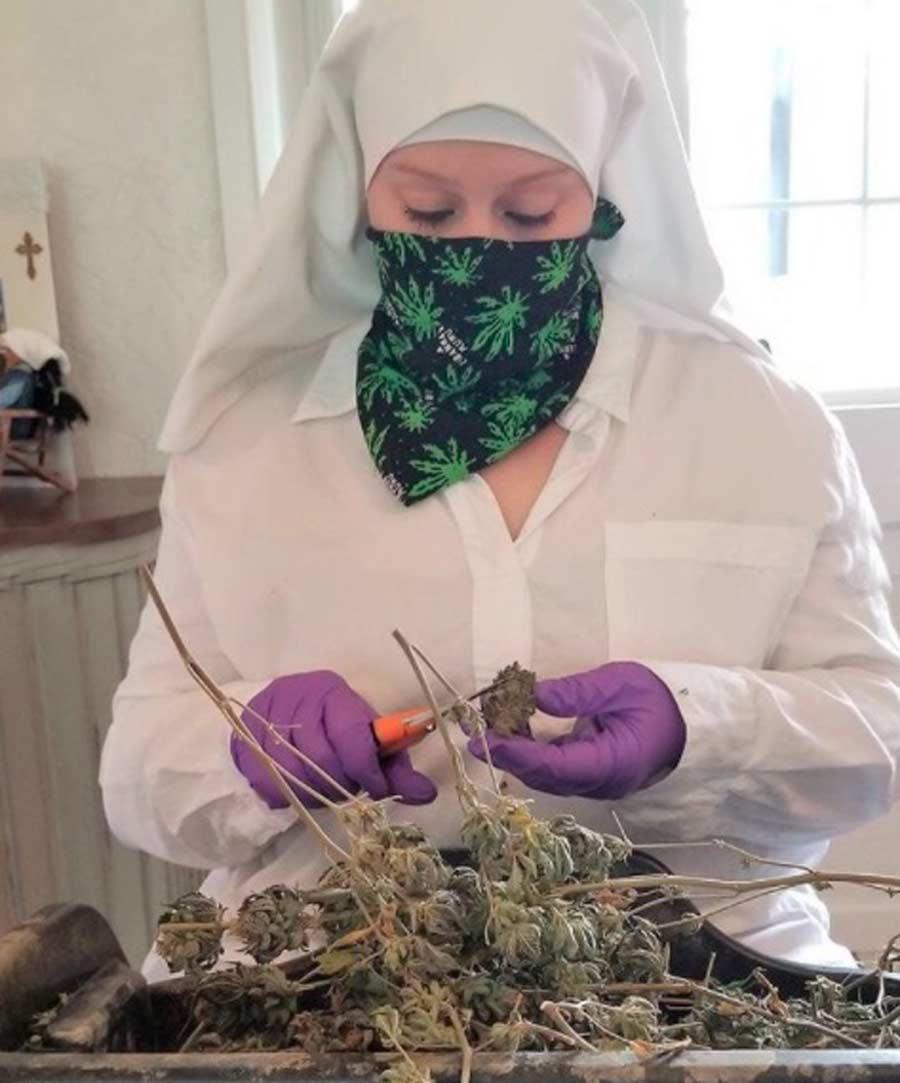 monjas-con-negocio-de-marihuana2