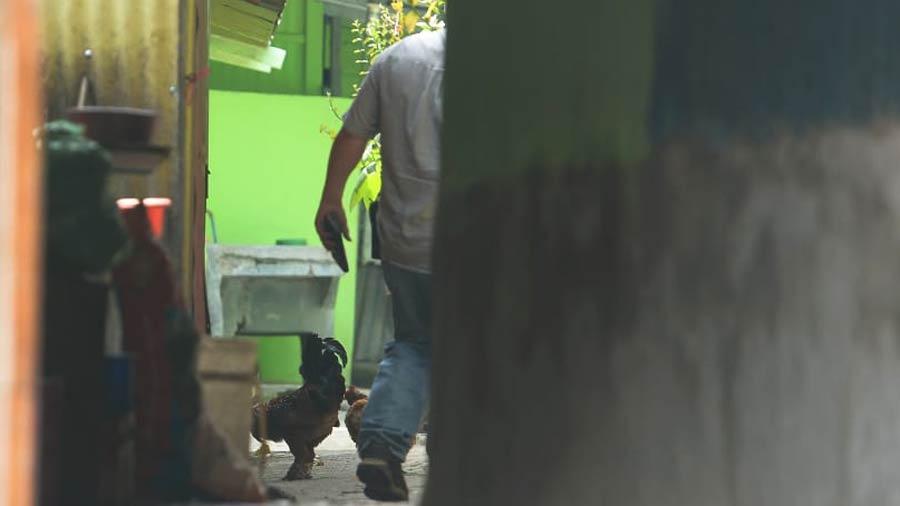 Homicidio centro San Salvador_02