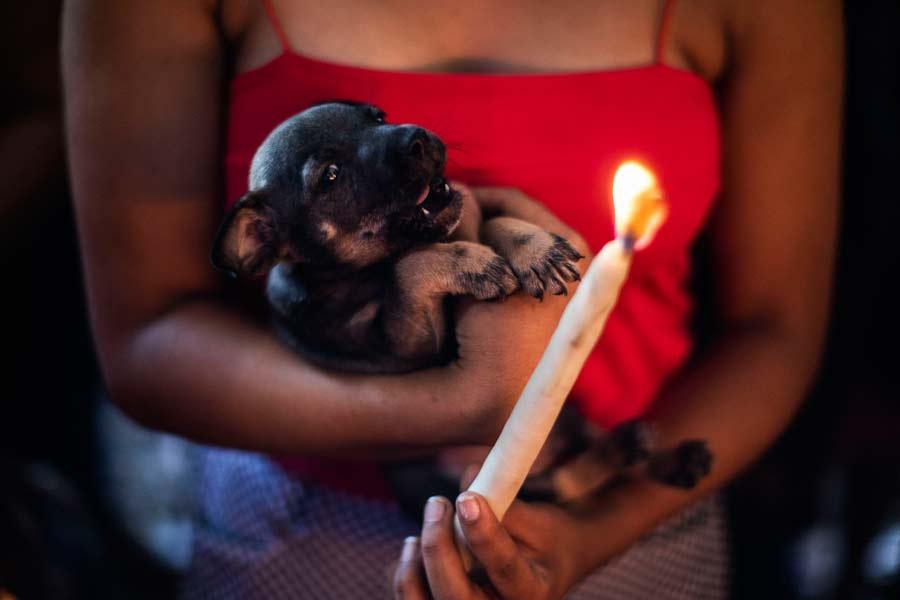 San Lazaro protege a los perros en Nicaragua09