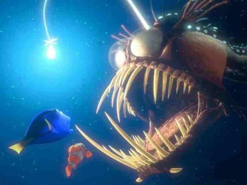 Insólito! Un extraño pez con colmillos y tentáculos fue encontrado en una  playa de California | Noticias de El Salvador