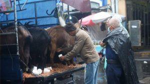 Imparable laboriosidad de los salvadoreños a pesar de torrenciales lluvias